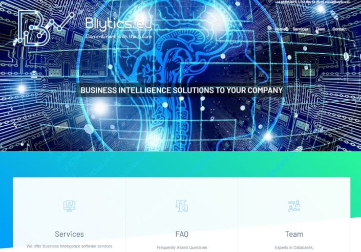 Web Business Intelligence